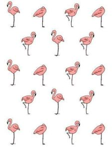 Flamingo four